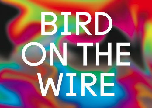 Bird-On-The-Wire-Flyer-Front-Feb2016