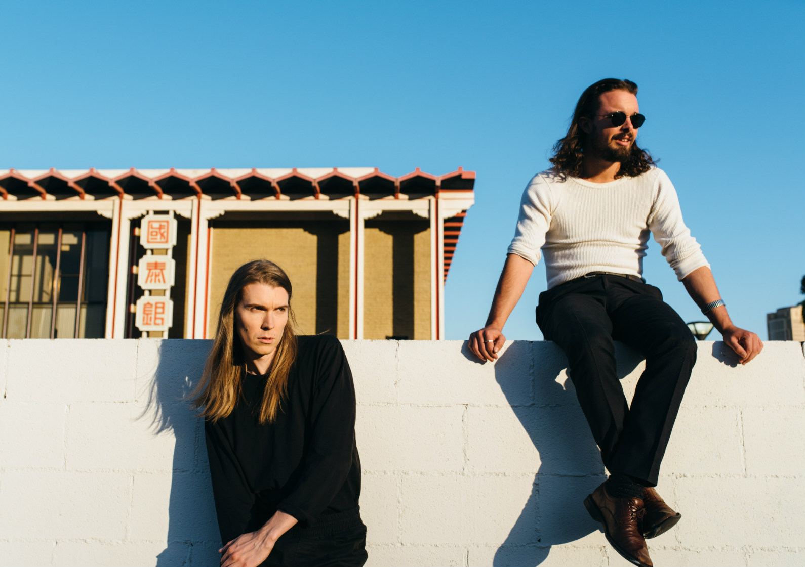 Bird On The Wire | Alex Cameron